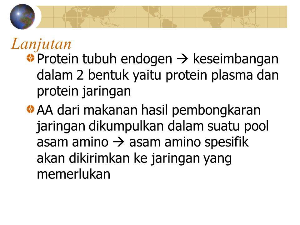 Lanjutan Protein tubuh endogen  keseimbangan dalam 2 bentuk yaitu protein plasma dan protein jaringan AA dari makanan hasil pembongkaran jaringan dikumpulkan dalam suatu pool asam amino  asam amino spesifik akan dikirimkan ke jaringan yang memerlukan