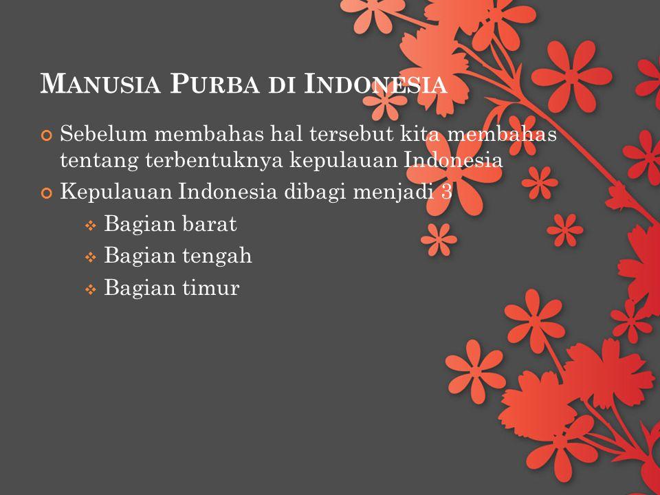 M ANUSIA P URBA DI I NDONESIA Sebelum membahas hal tersebut kita membahas tentang terbentuknya kepulauan Indonesia Kepulauan Indonesia dibagi menjadi