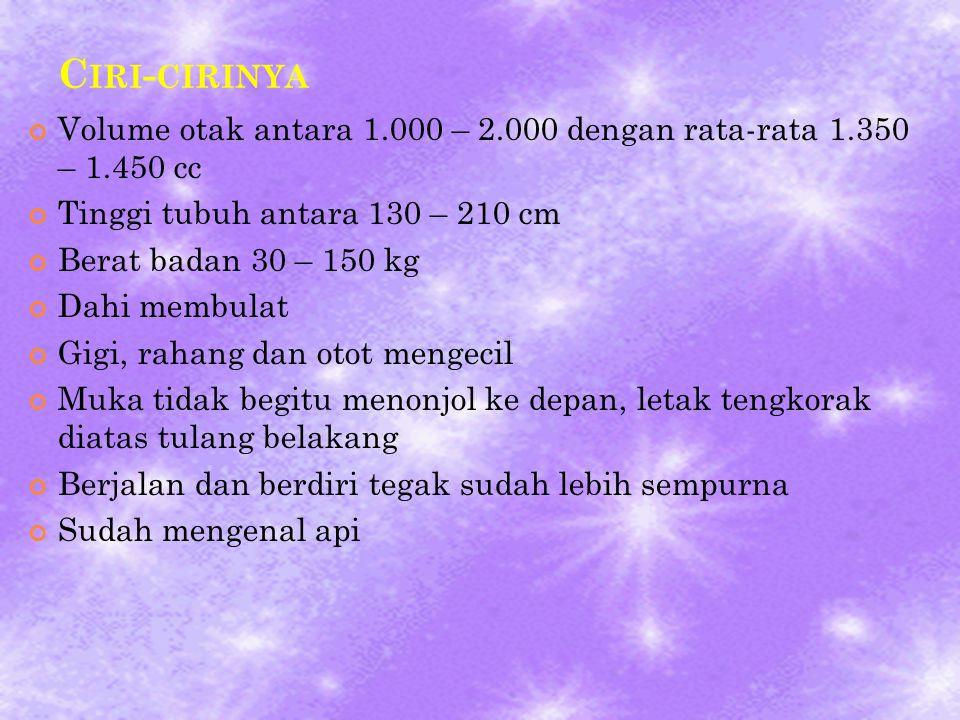 C IRI - CIRINYA Volume otak antara 1.000 – 2.000 dengan rata-rata 1.350 – 1.450 cc Tinggi tubuh antara 130 – 210 cm Berat badan 30 – 150 kg Dahi membu
