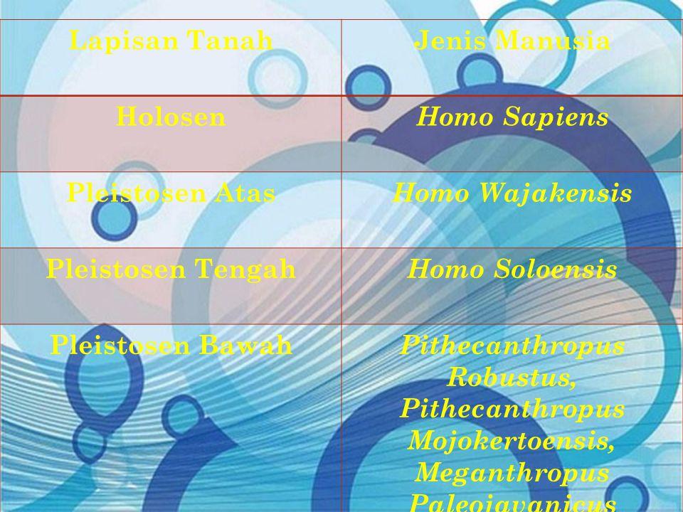 Lapisan TanahJenis Manusia Holosen Homo Sapiens Pleistosen Atas Homo Wajakensis Pleistosen Tengah Homo Soloensis Pleistosen Bawah Pithecanthropus Robu
