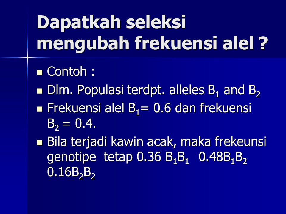 Dapatkah seleksi mengubah frekuensi alel ? Contoh : Contoh : Dlm. Populasi terdpt. alleles B 1 and B 2 Dlm. Populasi terdpt. alleles B 1 and B 2 Freku
