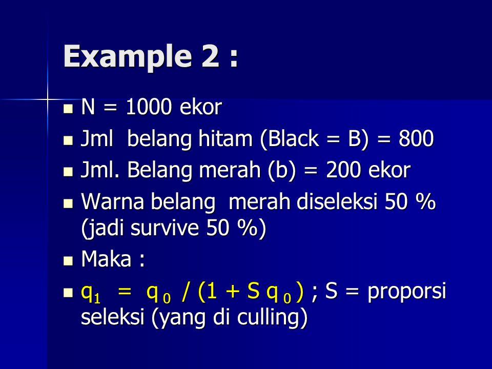 Example 2 : N = 1000 ekor N = 1000 ekor Jml belang hitam (Black = B) = 800 Jml belang hitam (Black = B) = 800 Jml. Belang merah (b) = 200 ekor Jml. Be