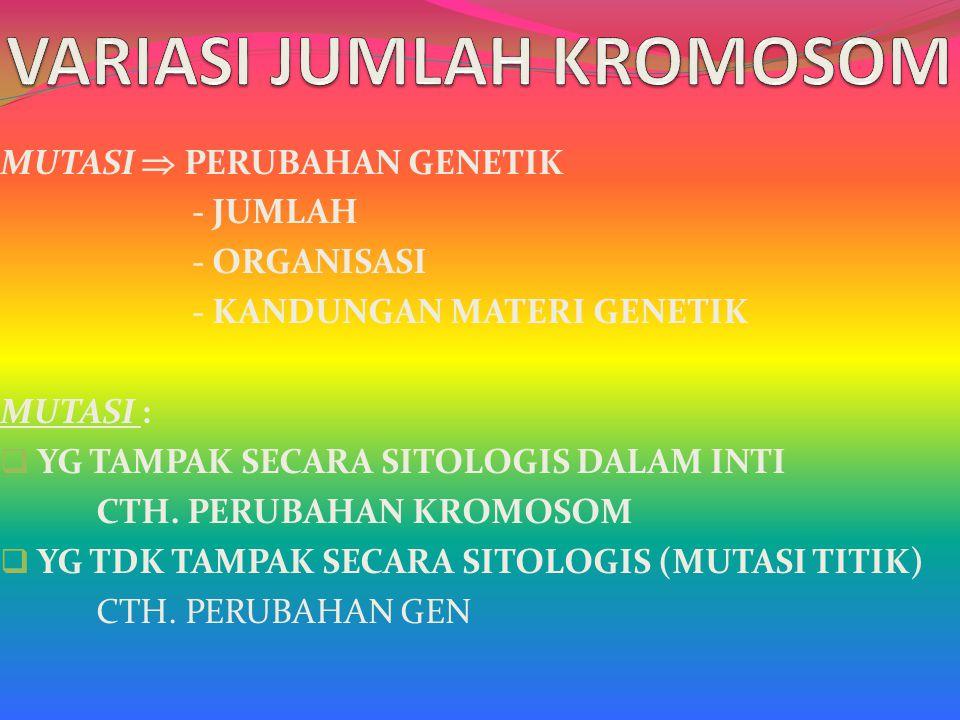 ALOTETRAPLOID : FERTIL KARENA PADA UMUMNYA KROMOSOM HOMOLOG BERPASANGAN BIVALEN MESKIPUN DITEMUKAN BEBERAPA KROMOSOM HOMOLOG BERPASANGAN KUADRIVALEN APLIKASI PEMINDAHAN SIFAT DARI SATU SPESIES KE SPESIES LAIN