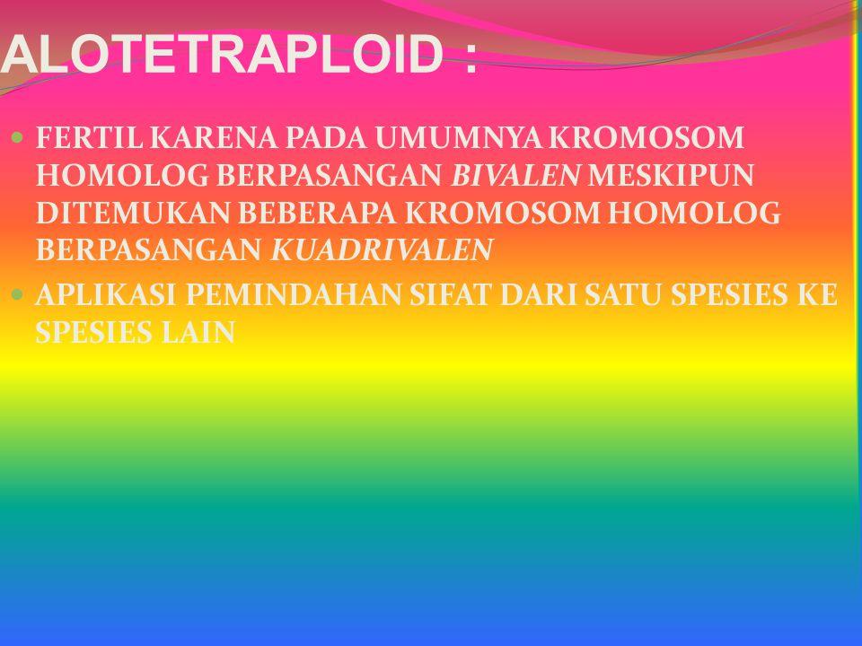 ALOTETRAPLOID : FERTIL KARENA PADA UMUMNYA KROMOSOM HOMOLOG BERPASANGAN BIVALEN MESKIPUN DITEMUKAN BEBERAPA KROMOSOM HOMOLOG BERPASANGAN KUADRIVALEN A