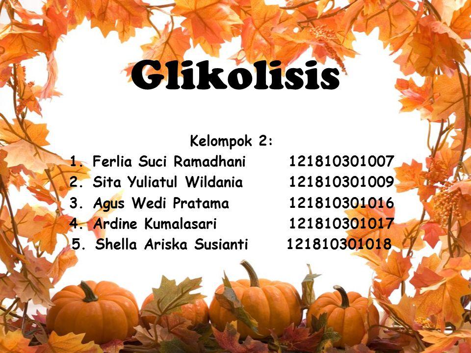 Glikolisis Kelompok 2: 1.Ferlia Suci Ramadhani 121810301007 2.Sita Yuliatul Wildania 121810301009 3.Agus Wedi Pratama 121810301016 4.Ardine Kumalasari