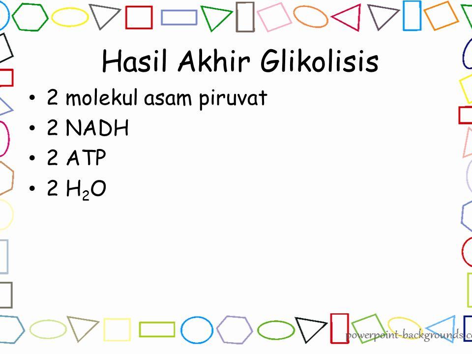 Hasil Akhir Glikolisis 2 molekul asam piruvat 2 NADH 2 ATP 2 H 2 O