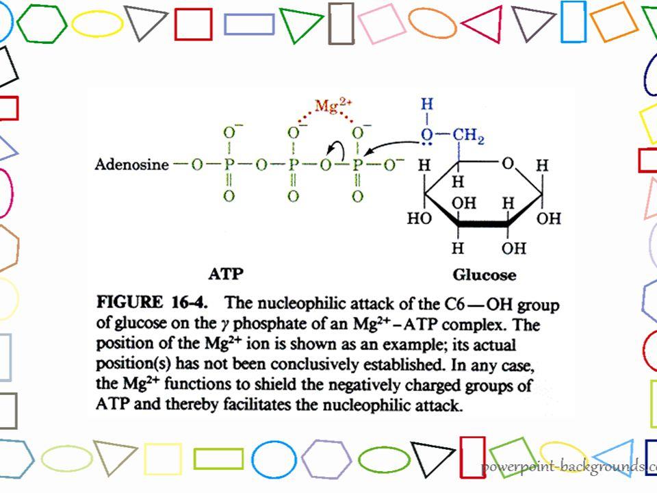 Glukosa-6-fosfat dikatalis oleh enzim Fosfoheksosa isomerase menjadi isomernya Fruktosa-6- fosfat Merupakan suatu reaksi reversibel yang dikontrol melalui kadar substratnya Glukosa-6- fosfat (G 6 P) Glukosa-6- fosfat (G 6 P) Fruktosa-6- fosfat (F6P) Fruktosa-6- fosfat (F6P) enzim fosfoheksosa isomerase Tahap 2