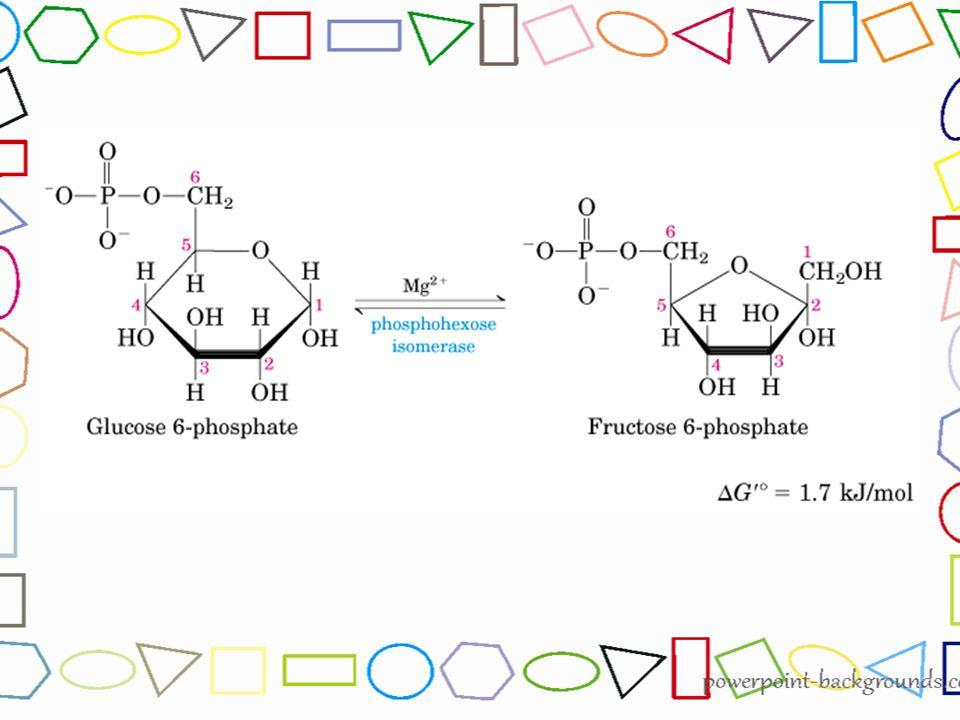 2 molekul 1,3- bisfosfogliserat dengan bantuan enzim fosfogliserat kinase diubah menjadi 2 molekul 3-Fosfogliserat dengan melepas 2 gugus P yang ditangkap ADP.