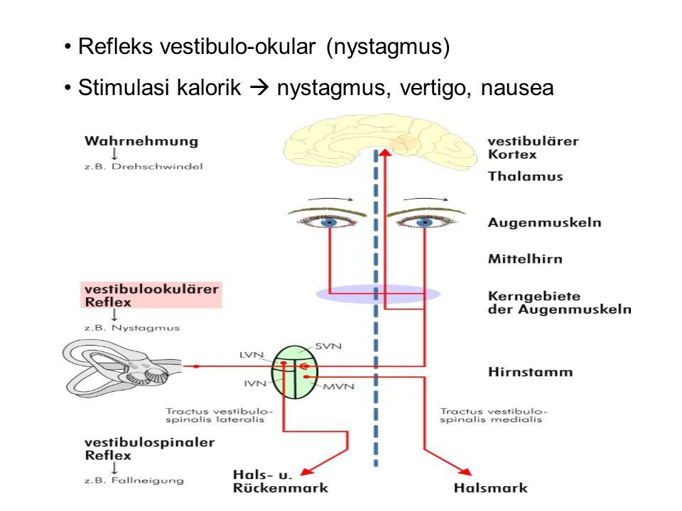 Refleks vestibulo-okular (nystagmus) Stimulasi kalorik  nystagmus, vertigo, nausea