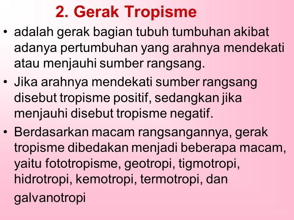 2. Gerak Tropisme adalah gerak bagian tubuh tumbuhan akibat adanya pertumbuhan yang arahnya mendekati atau menjauhi sumber rangsang. Jika arahnya mend