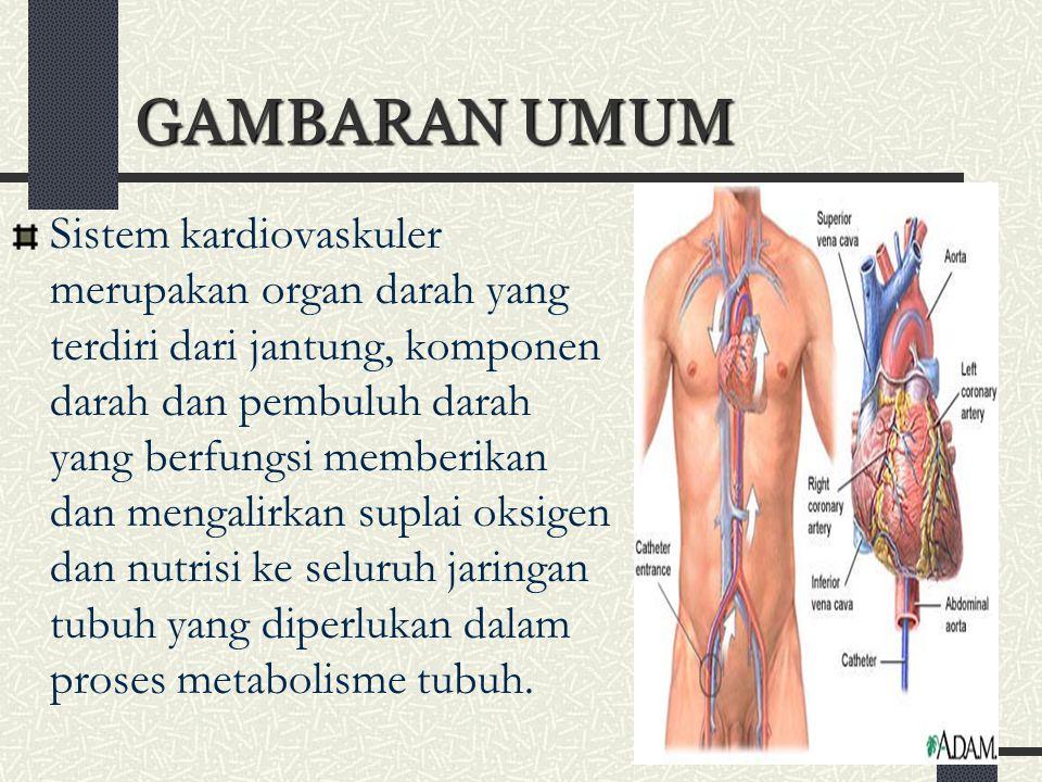 2 GAMBARAN UMUM Sistem kardiovaskuler merupakan organ darah yang terdiri dari jantung, komponen darah dan pembuluh darah yang berfungsi memberikan dan