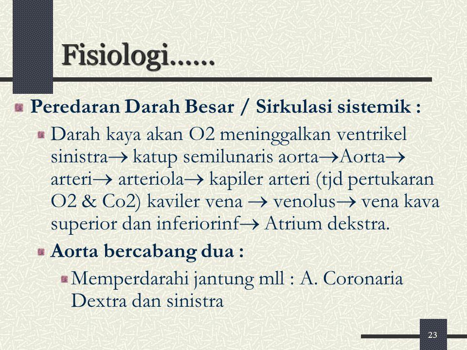23 Fisiologi...... Peredaran Darah Besar / Sirkulasi sistemik : Darah kaya akan O2 meninggalkan ventrikel sinistra  katup semilunaris aorta  Aorta 