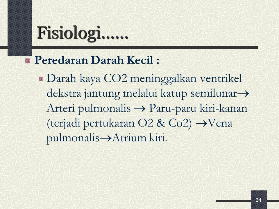 24 Fisiologi...... Peredaran Darah Kecil : Darah kaya CO2 meninggalkan ventrikel dekstra jantung melalui katup semilunar  Arteri pulmonalis  Paru-pa