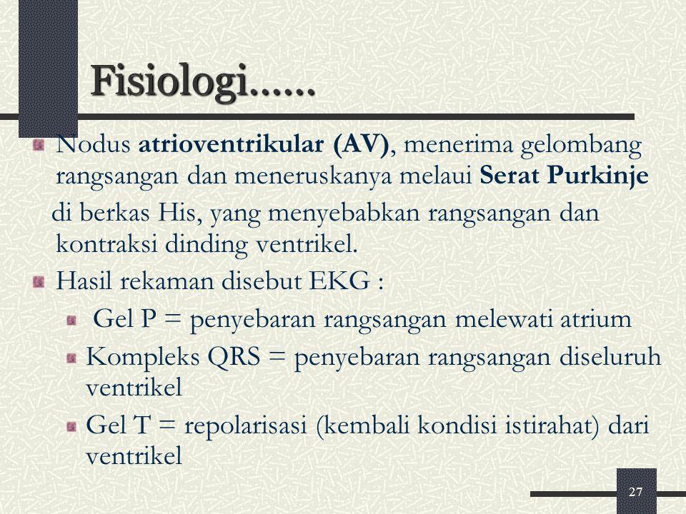 27 Fisiologi...... Nodus atrioventrikular (AV), menerima gelombang rangsangan dan meneruskanya melaui Serat Purkinje di berkas His, yang menyebabkan r