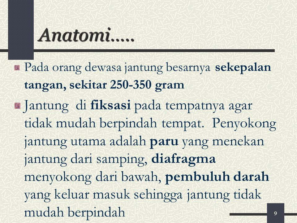 9 Anatomi….. Pada orang dewasa jantung besarnya sekepalan tangan, sekitar 250-350 gram Jantung di fiksasi pada tempatnya agar tidak mudah berpindah te