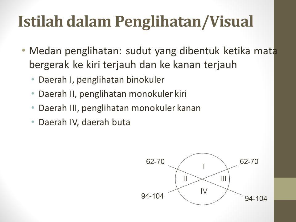 Istilah dalaPenglihatan/Visual Daerah I : tempat kedua mata mampu melihat sebuah objek dalam keadaan yang sama Daerah II : tempat terjauh yang dapat dilihat oleh mata kiri ketika mata kiri kita gerakkan ke sudut paling kiri Daerah III : tempat terjauh yang dapat dilihat oleh mata kanan ketika mata kanan kita gerakkan ke sudut paling kanan Daerah IV : daerah buta, yakni daerah yang sama sekali tidak dapat dilihat oleh kedua mata
