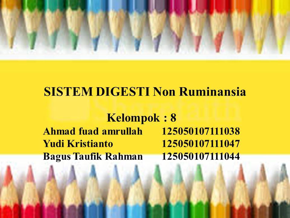 SISTEM DIGESTI Non Ruminansia Kelompok : 8 Ahmad fuad amrullah 125050107111038 Yudi Kristianto 125050107111047 Bagus Taufik Rahman 125050107111044
