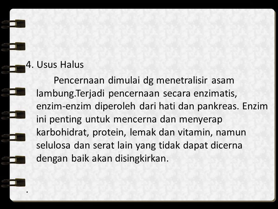 4. Usus Halus Pencernaan dimulai dg menetralisir asam lambung.Terjadi pencernaan secara enzimatis, enzim-enzim diperoleh dari hati dan pankreas. Enzim