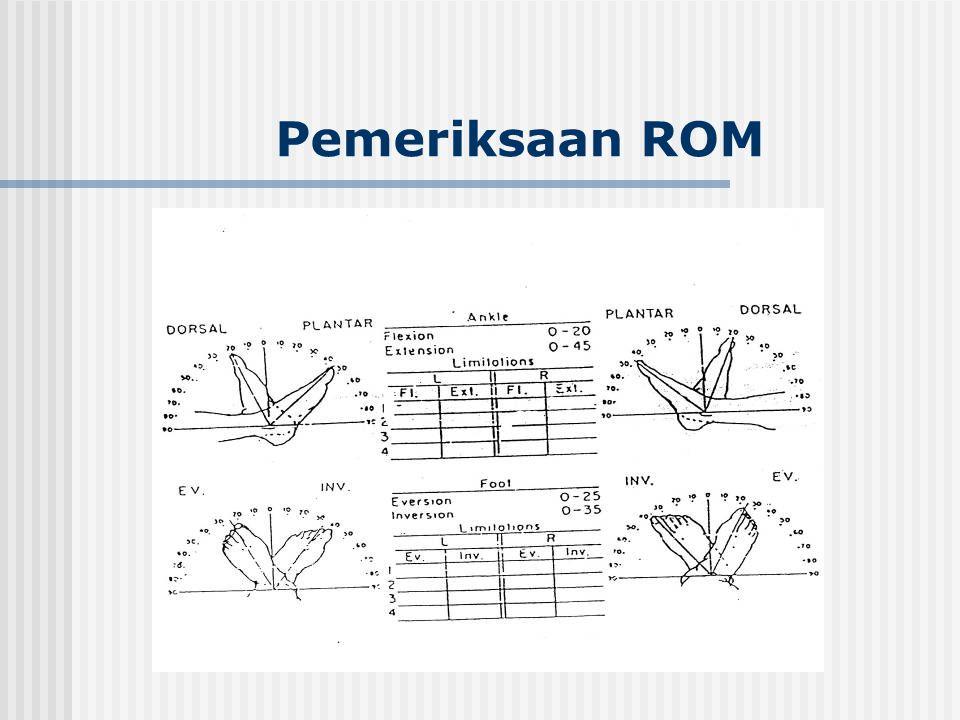 Pemeriksaan ROM