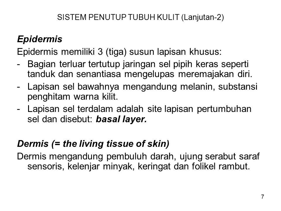 7 SISTEM PENUTUP TUBUH KULIT (Lanjutan-2) Epidermis Epidermis memiliki 3 (tiga) susun lapisan khusus: -Bagian terluar tertutup jaringan sel pipih keras seperti tanduk dan senantiasa mengelupas meremajakan diri.