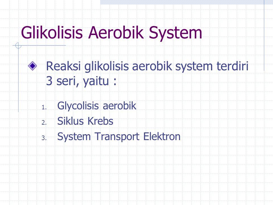 Glikolisis Aerobik System Reaksi glikolisis aerobik system terdiri 3 seri, yaitu : 1.