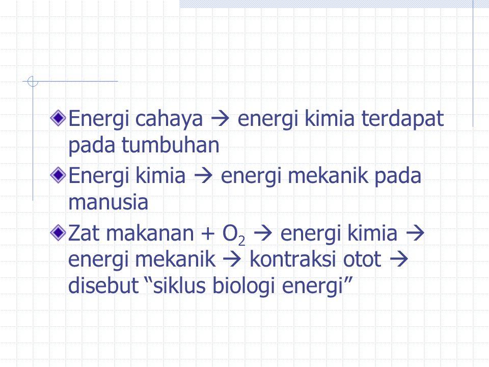 Energi cahaya  energi kimia terdapat pada tumbuhan Energi kimia  energi mekanik pada manusia Zat makanan + O 2  energi kimia  energi mekanik  kontraksi otot  disebut siklus biologi energi