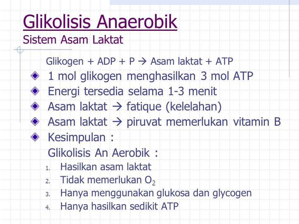 Glikolisis Anaerobik Sistem Asam Laktat Glikogen + ADP + P  Asam laktat + ATP 1 mol glikogen menghasilkan 3 mol ATP Energi tersedia selama 1-3 menit Asam laktat  fatique (kelelahan) Asam laktat  piruvat memerlukan vitamin B Kesimpulan : Glikolisis An Aerobik : 1.
