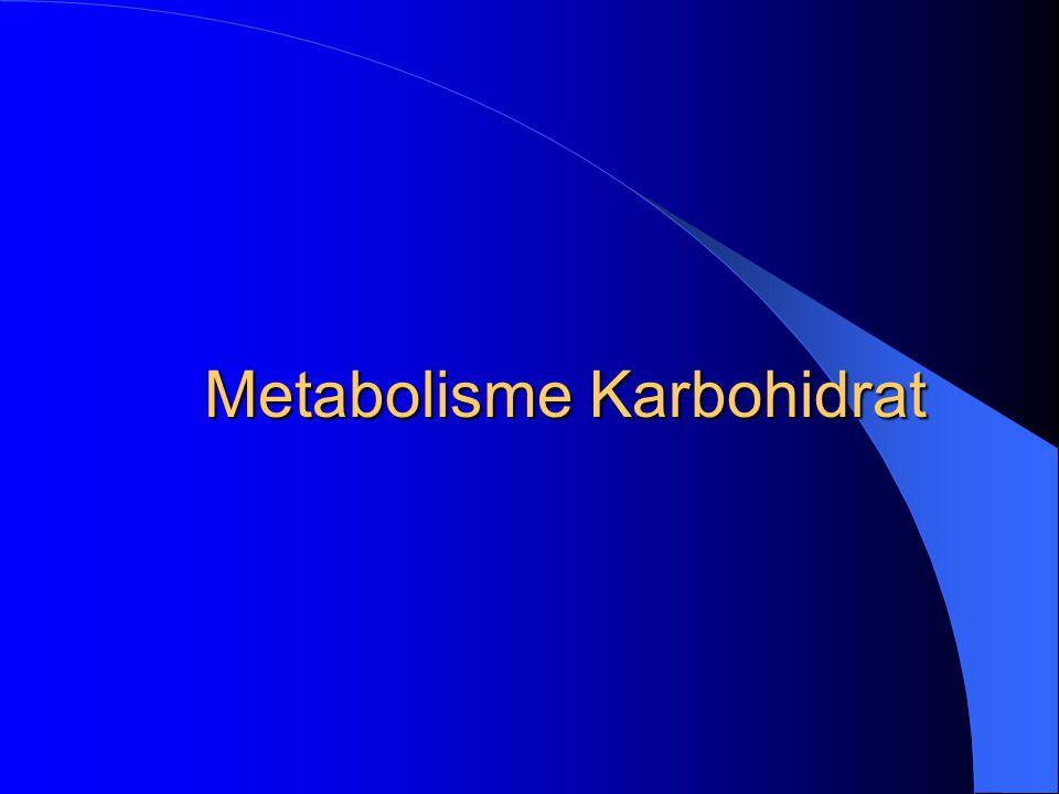 Metabolisme Karbohidrat