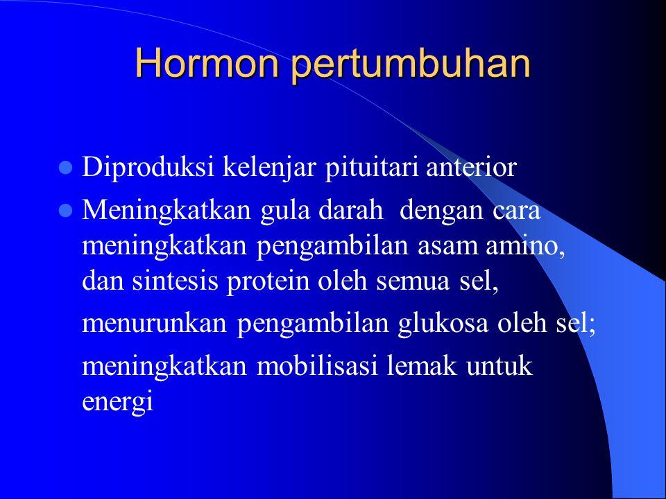 Hormon pertumbuhan Diproduksi kelenjar pituitari anterior Meningkatkan gula darah dengan cara meningkatkan pengambilan asam amino, dan sintesis protei