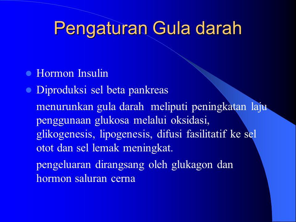 Pengaturan Gula darah Hormon Insulin Diproduksi sel beta pankreas menurunkan gula darah meliputi peningkatan laju penggunaan glukosa melalui oksidasi,