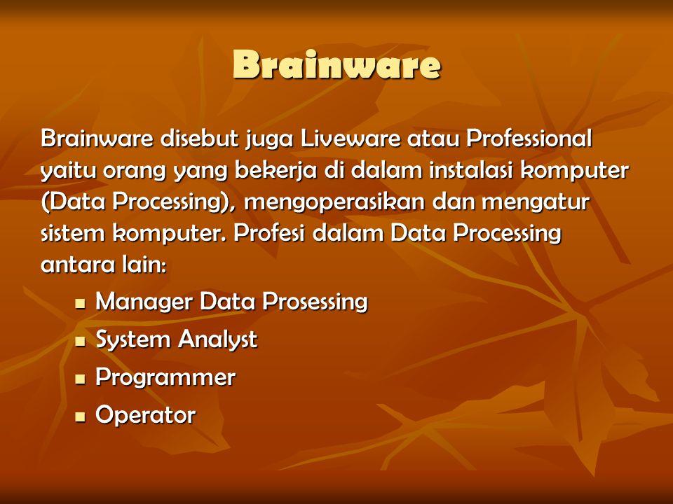 Brainware Brainware disebut juga Liveware atau Professional yaitu orang yang bekerja di dalam instalasi komputer (Data Processing), mengoperasikan dan