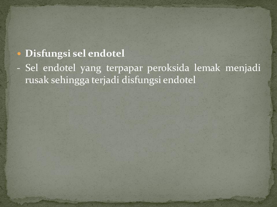 Disfungsi sel endotel - Sel endotel yang terpapar peroksida lemak menjadi rusak sehingga terjadi disfungsi endotel