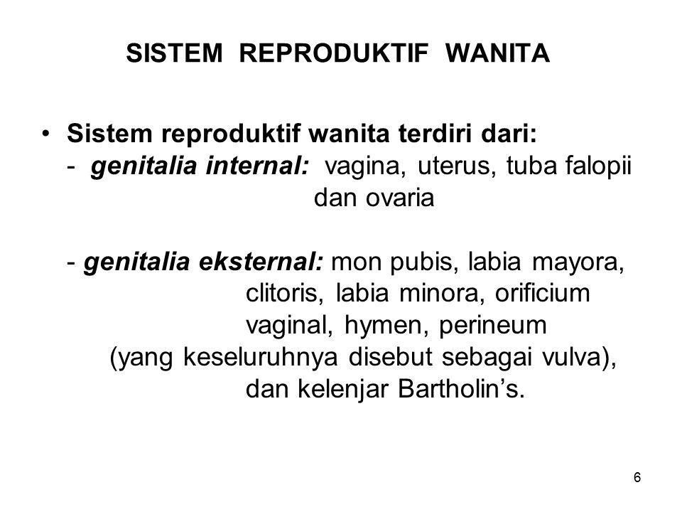6 SISTEM REPRODUKTIF WANITA Sistem reproduktif wanita terdiri dari: - genitalia internal: vagina, uterus, tuba falopii dan ovaria - genitalia eksternal: mon pubis, labia mayora, clitoris, labia minora, orificium vaginal, hymen, perineum (yang keseluruhnya disebut sebagai vulva), dan kelenjar Bartholin's.