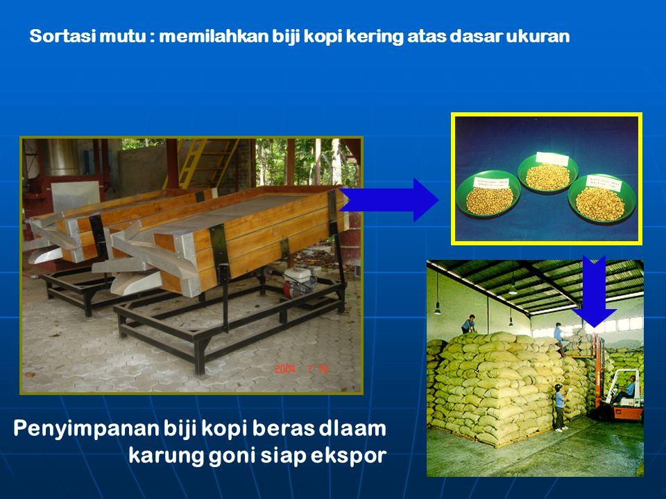 Sortasi mutu : memilahkan biji kopi kering atas dasar ukuran Penyimpanan biji kopi beras dlaam karung goni siap ekspor