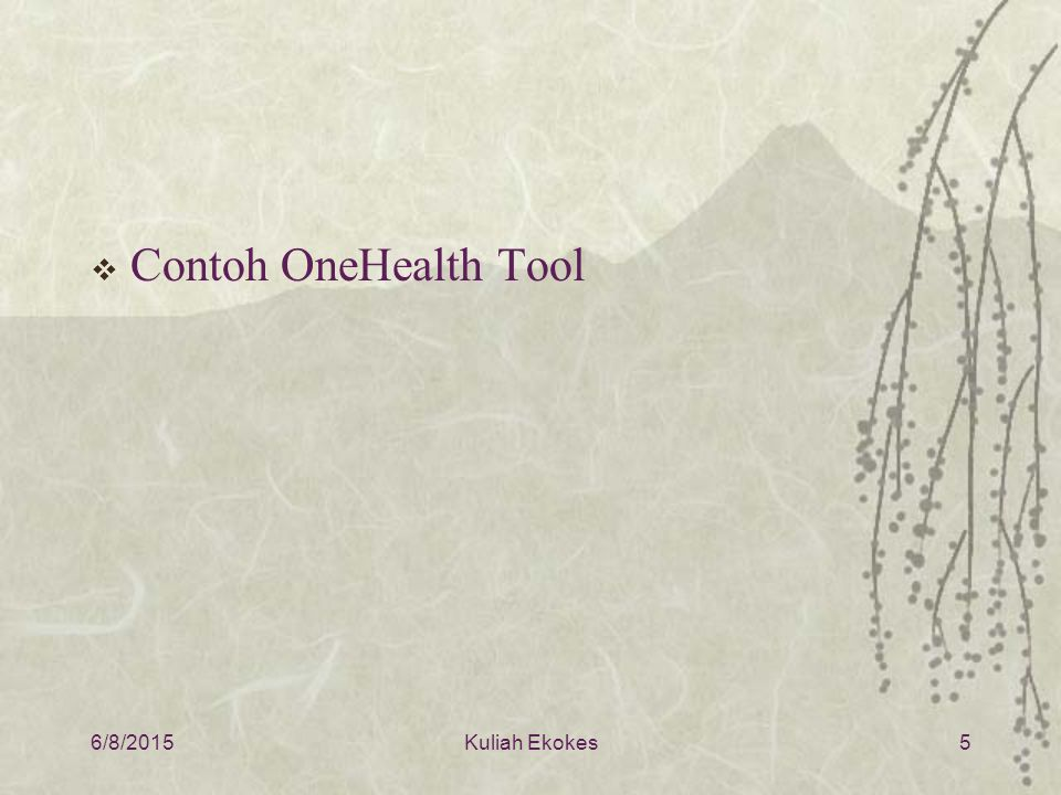  Contoh OneHealth Tool 6/8/2015Kuliah Ekokes5