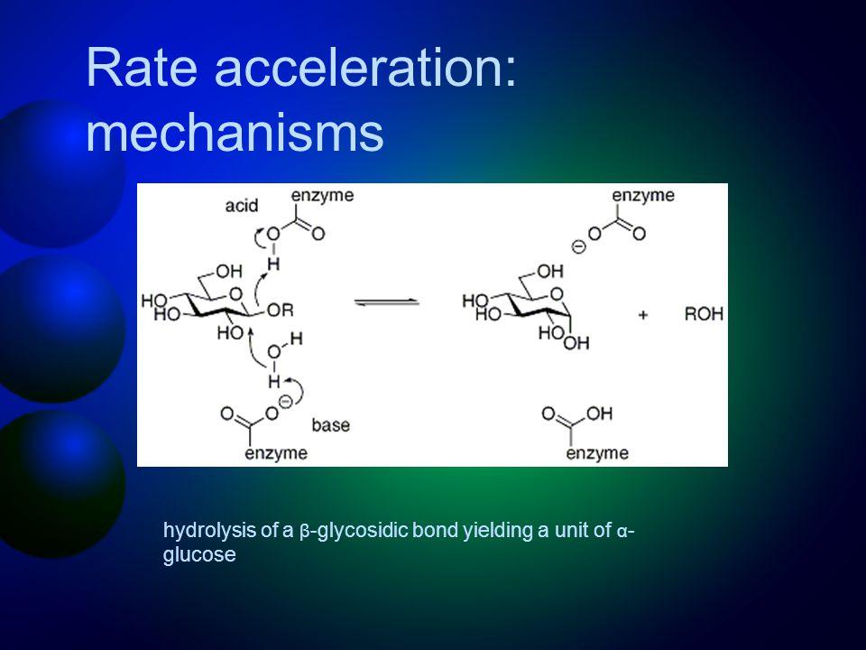 hydrolysis of a β -glycosidic bond yielding a unit of α - glucose