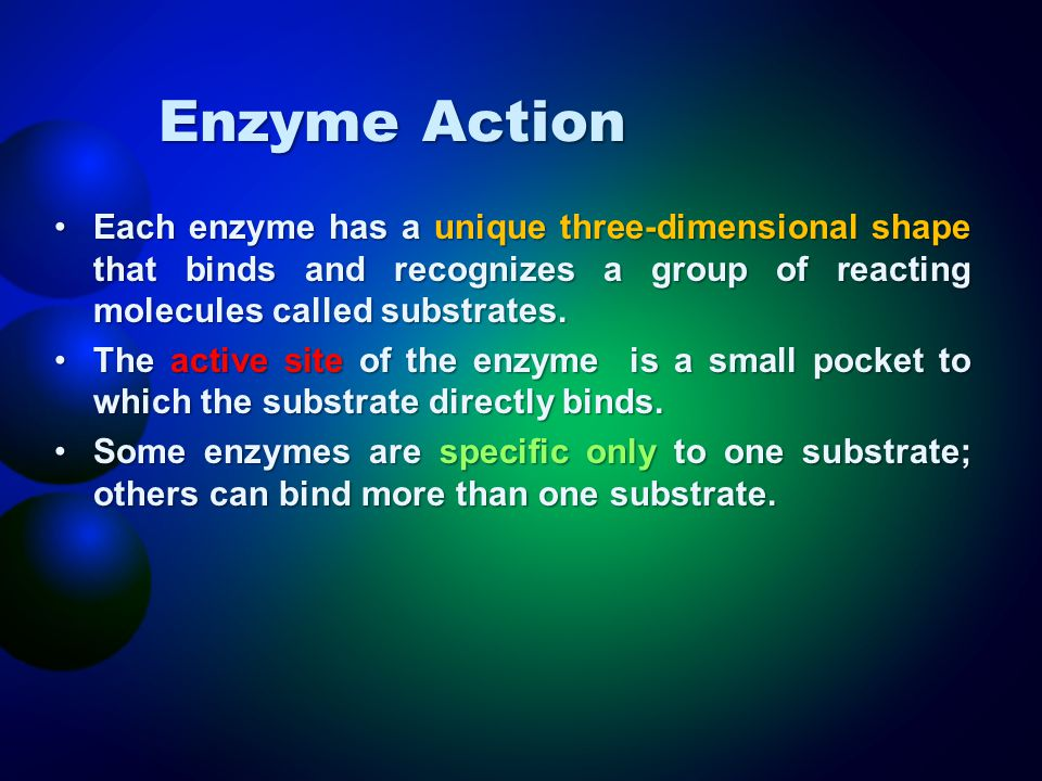 Enzyme Action Each enzyme has a unique three-dimensional shape that binds and recognizes a group of reacting molecules called substrates.Each enzyme h