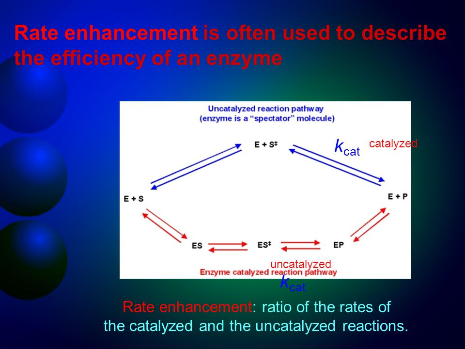 Rate enhancement is often used to describe the efficiency of an enzyme Rate enhancement: ratio of the rates of the catalyzed and the uncatalyzed react