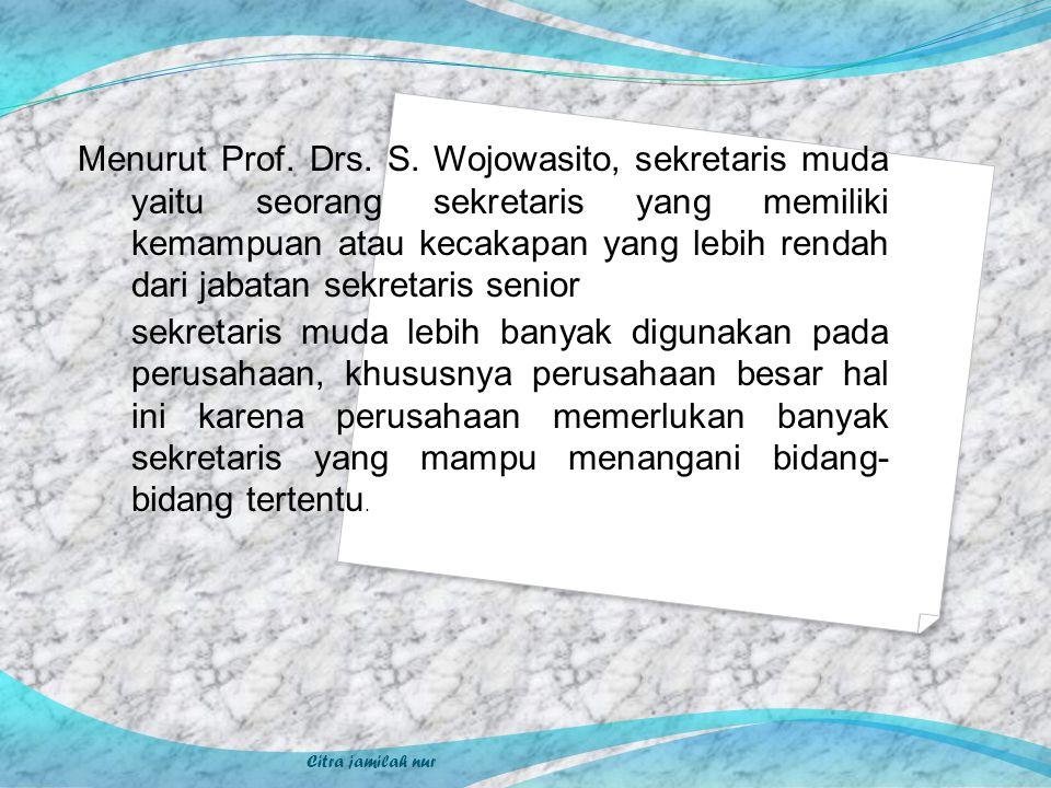 Menurut Prof. Drs. S. Wojowasito, sekretaris muda yaitu seorang sekretaris yang memiliki kemampuan atau kecakapan yang lebih rendah dari jabatan sekre