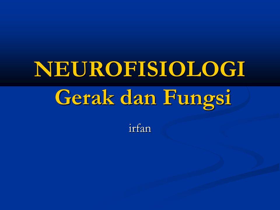 NEUROFISIOLOGI Gerak dan Fungsi irfan
