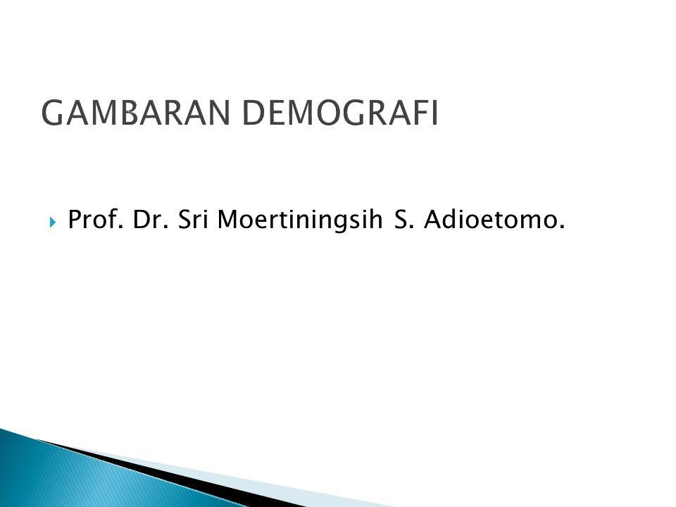 GAMBARAN DEMOGRAFI  Prof. Dr. Sri Moertiningsih S. Adioetomo.