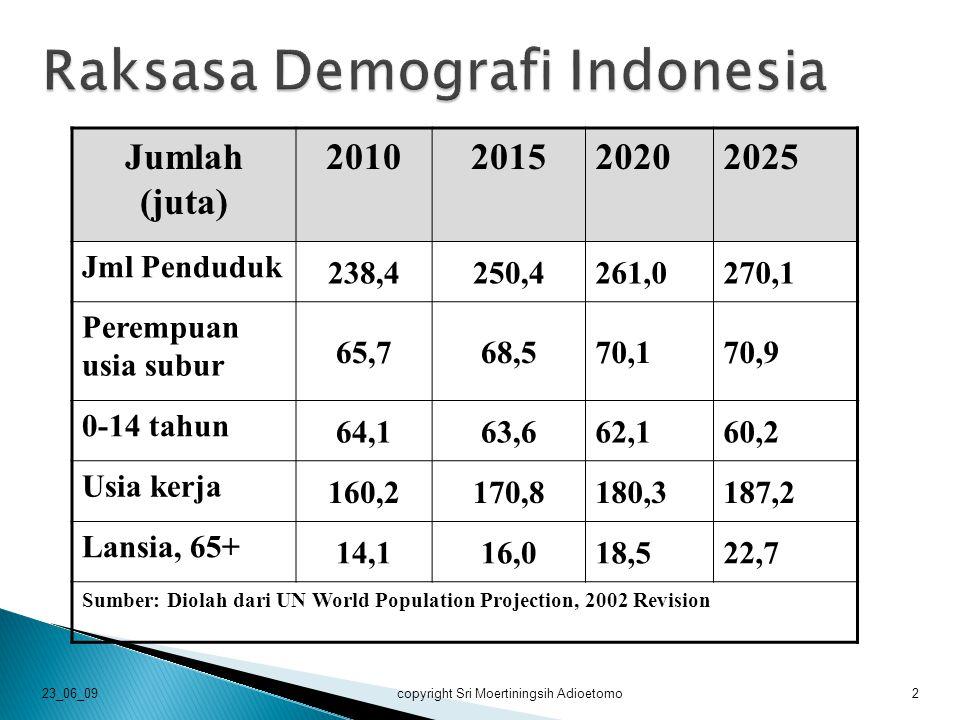 2005-20092015-20202020-2025 Laju Pertumbuhan Penduduk 1,26%0,99%0.68% Rata-rata jumlah anak (TFR) 2,32,11,9 Angka Kematian Bayi (IMR) 41,629,221,9 Jumlah lahir / thn 4,5 juta4,3 juta3,9 juta Replacement level 1,070,980,91 Harapan Hidup/ thn 66,869,972,0 Sumber: Diolah dari UN World Population Projection, 2002 Revision 23_06_09copyright Sri Moertiningsih Adioetomo3