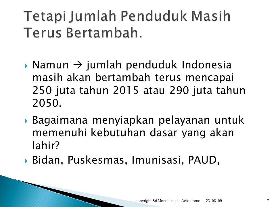  Namun  jumlah penduduk Indonesia masih akan bertambah terus mencapai 250 juta tahun 2015 atau 290 juta tahun 2050.  Bagaimana menyiapkan pelayanan