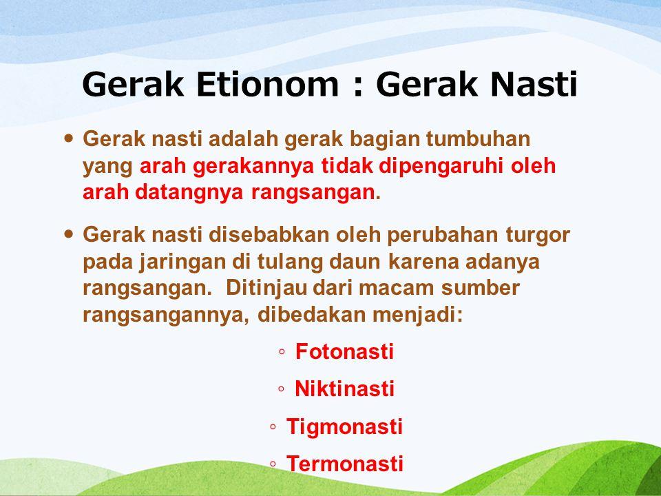Gerak Etionom : Gerak Nasti Gerak nasti adalah gerak bagian tumbuhan yang arah gerakannya tidak dipengaruhi oleh arah datangnya rangsangan. Gerak nast