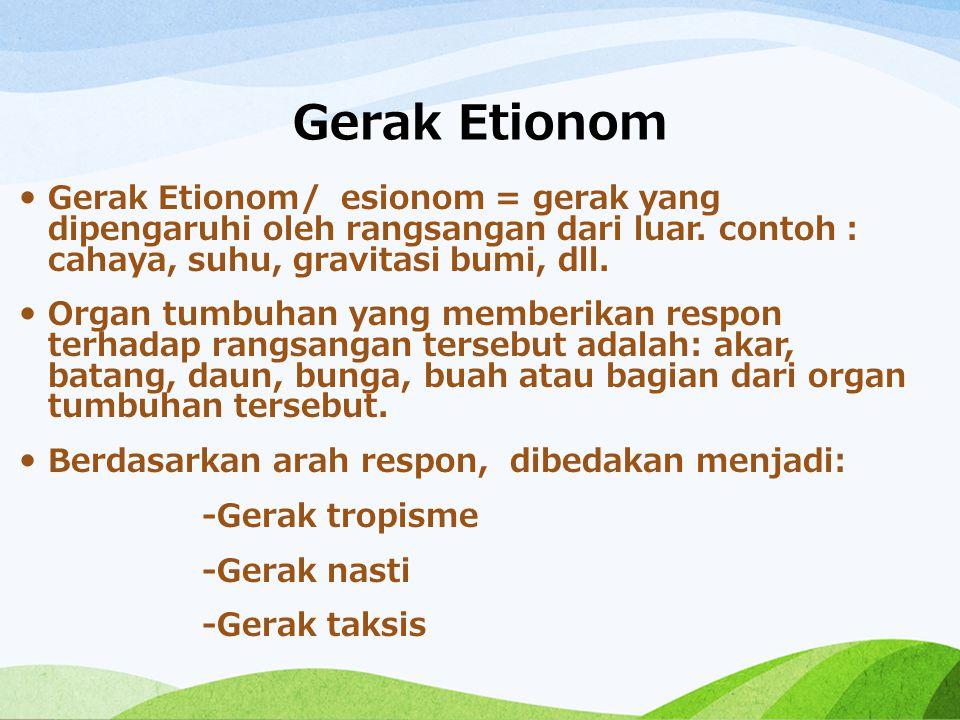 Gerak Etionom Gerak Etionom/ esionom = gerak yang dipengaruhi oleh rangsangan dari luar. contoh : cahaya, suhu, gravitasi bumi, dll. Organ tumbuhan ya