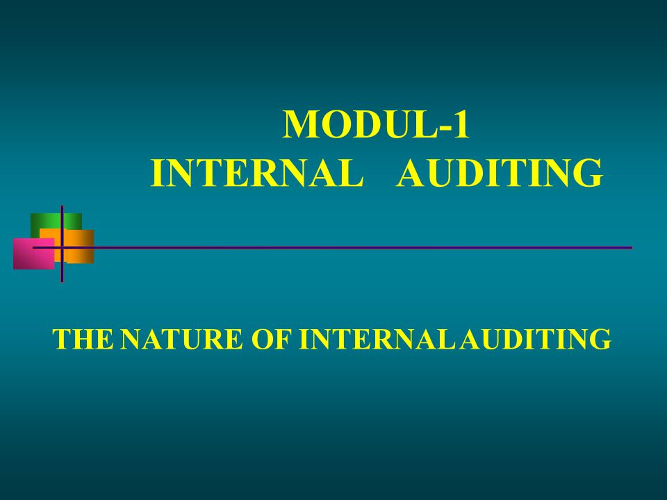 MODUL-1 INTERNALAUDITING THENATUREOF INTERNAL AUDITING