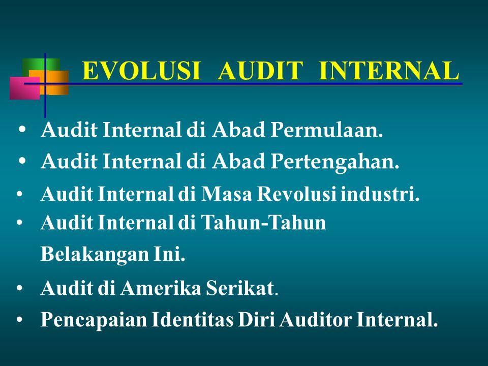  Pada awalnya sebagai adik Profesi Eksternal Auditor & fokus pada keakuratan angka-angka keuangan serta masalah teknis akuntansi.