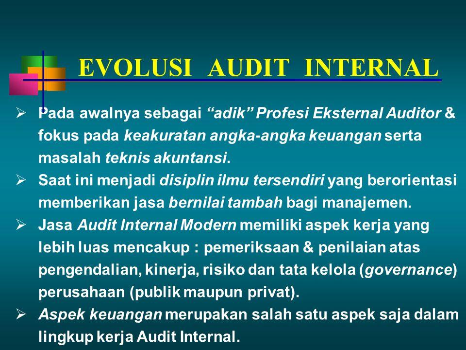 """ Pada awalnya sebagai """"adik"""" Profesi Eksternal Auditor & fokus pada keakuratan angka-angka keuangan serta masalah teknis akuntansi.  Saat ini menjad"""