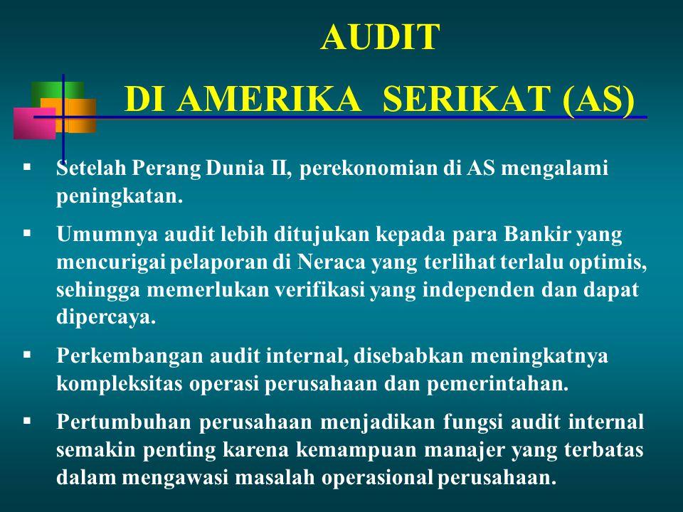 PENCAPAIAN IDENTITAS  Selama beberapa tahun Auditor Eksternal terus memberikan pengaruh terhadap perkembangan Audit Internal.