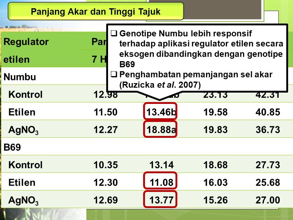 Panjang Akar dan Tinggi Tajuk Regulator etilen Panjang akar (cm)Tinggi tajuk (cm) 7 HSP14 HSP7 HSP14 HSP Numbu Kontrol12.9816.27ab23.1342.31 Etilen11.